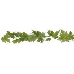 Atrapa listí révové zelené